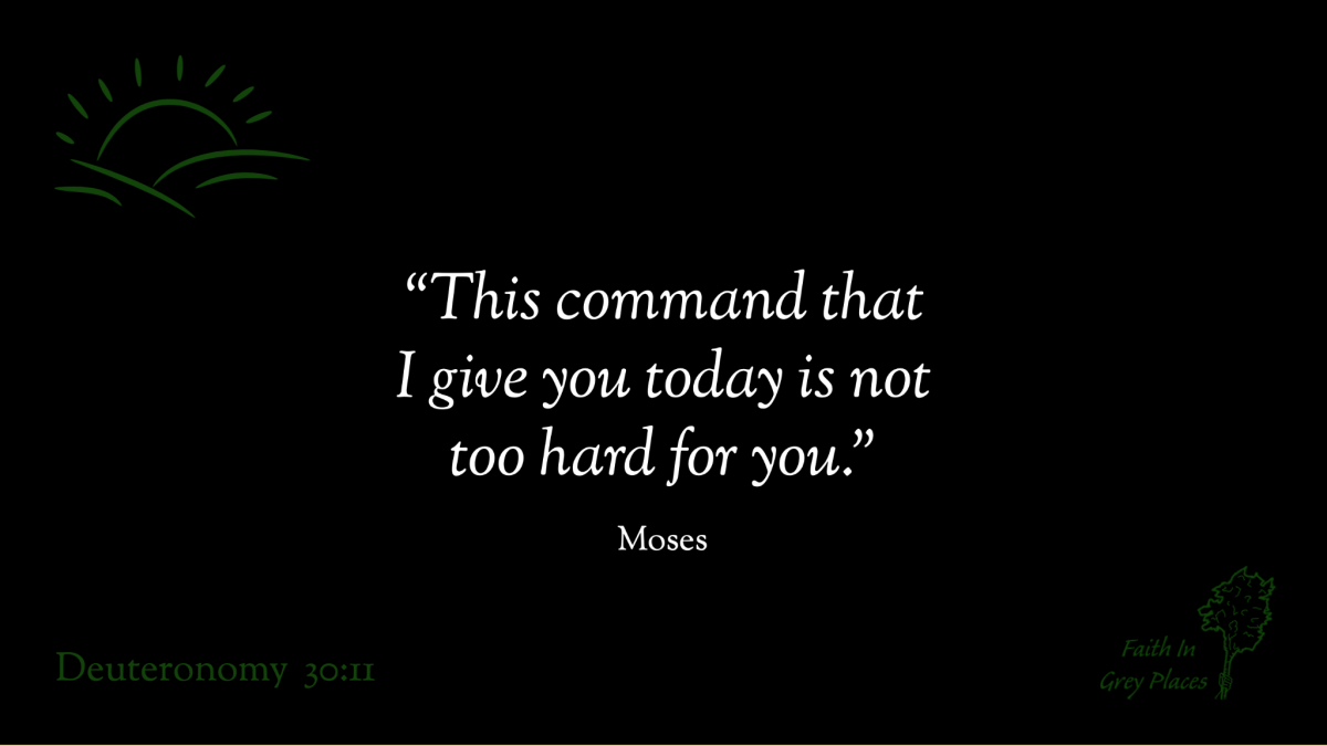 """""""This command that I give you today is not too hard for you."""" Moses, Deuteronomy 30:11"""
